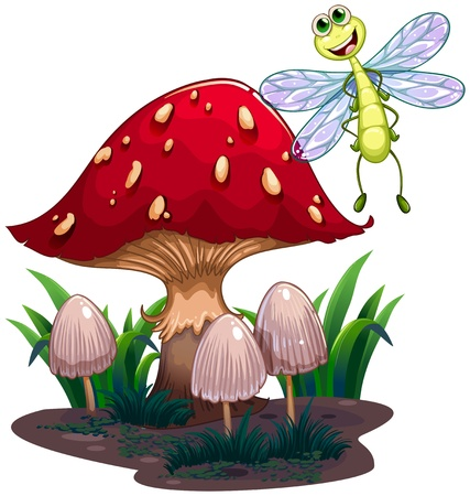 Illustration of a dragonfly flying beside the mushrooms on a white background  Vector