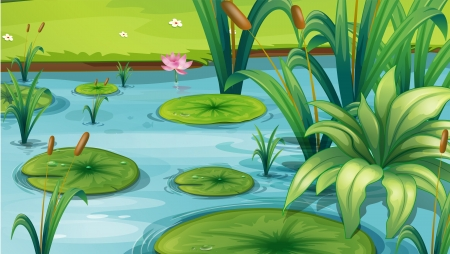 lilypad: Illustration of a pond with many plants