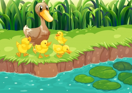 Illustration of a mother duck with her ducklings at the river Illustration