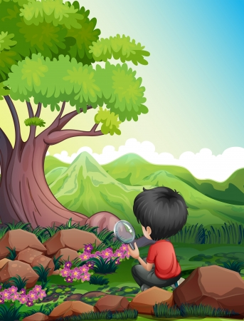 looking glass: Illustration of a boy holding a magnifying glass while looking at the flowers