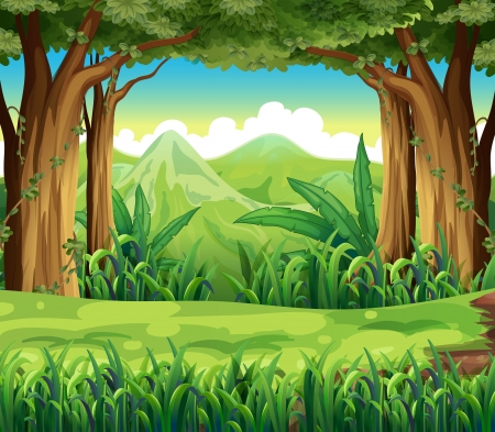 Illustration of the green forest Stock Vector - 21095156