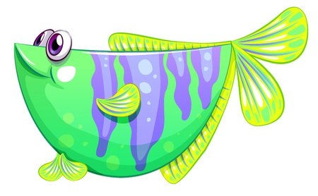 Illustration of a unique fish on a white background Illustration