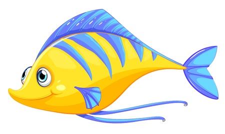 edible fish: Illustration of a fish