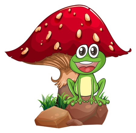 long tongue: Illustration of a frog and a mushroom on a white background Illustration