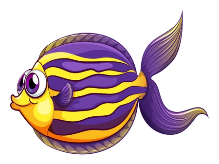 sea side: Illustration of a colorful round fish on a white background Illustration
