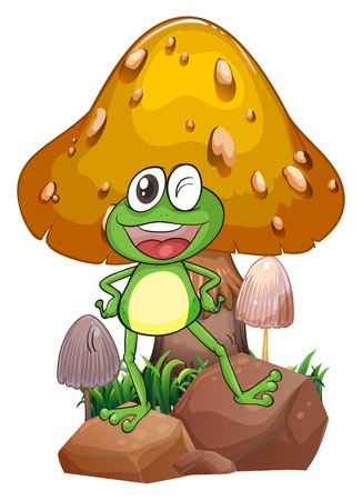 giant mushroom: Illustration of a smiling frog near the giant mushroom on a white background