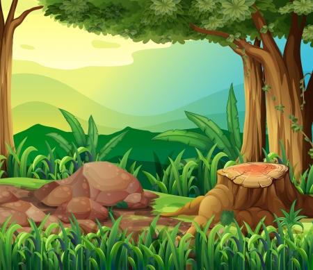 sliced tree: Illustration of the tree trunk