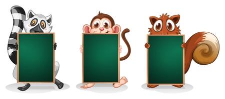 three animals: Illustrazione dei tre animali con le schede vuote su uno sfondo bianco