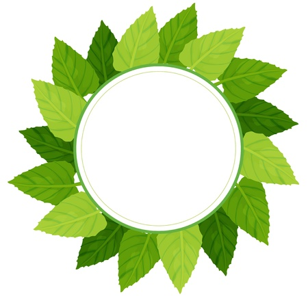 Illustration of a round green leafy border on a white background Stock Vector - 21234623