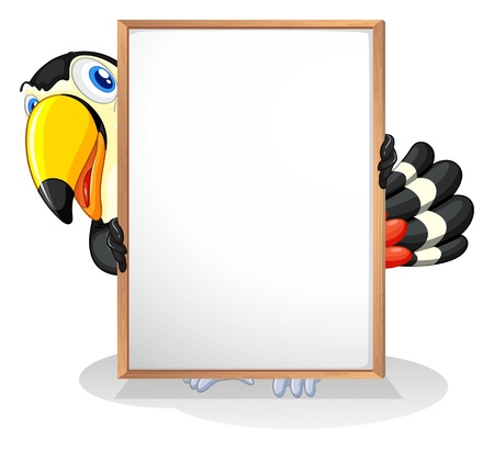 Illustration of a tucan on a white background Çizim