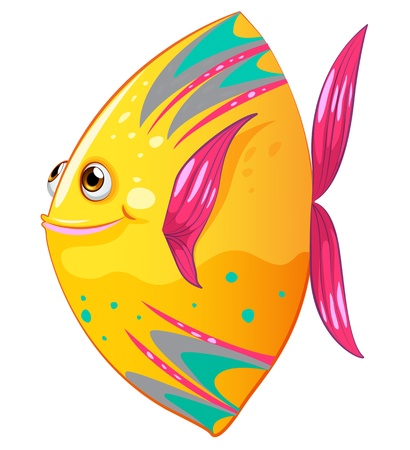 Illustration of a big colorful fish Vector