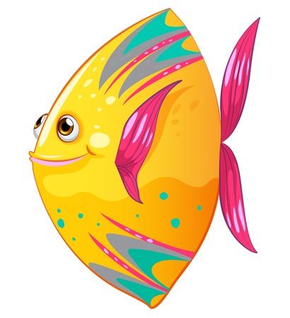 bunter fisch: Illustration von einem gro�en bunten Fischen