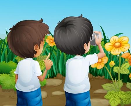 farm boys: Illustration of the two boys taking photos of the flowers Illustration