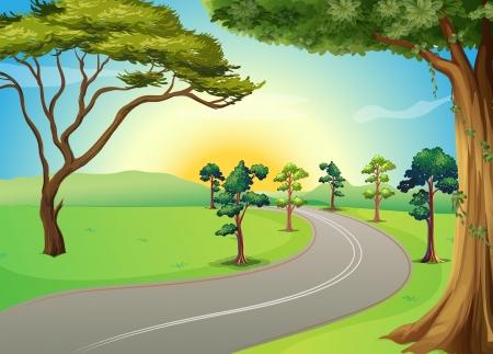 Illustration d'une longue route sinueuse dans la forêt