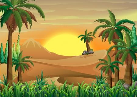 selva: Ilustración de un bosque en el desierto Vectores