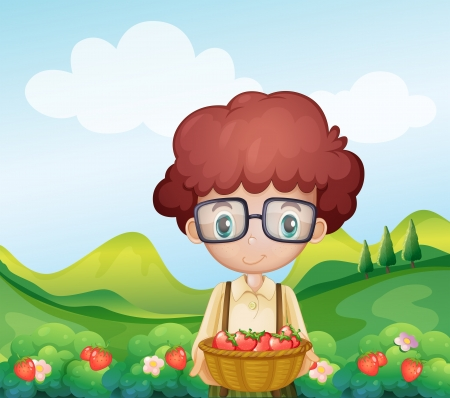 Illustration of a boy harvesting strawberries Vector