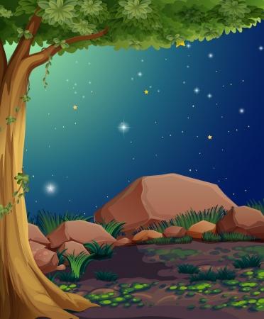 jungle plants: Illustration of a rocky forest Illustration