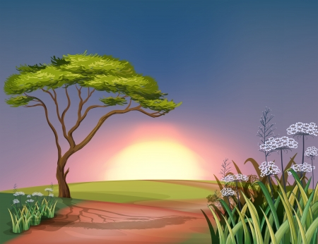 Illustration of a sunset at the hilltop Stock Vector - 21658822