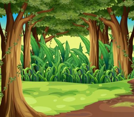 숲에서 거대한 나무의 그림 일러스트