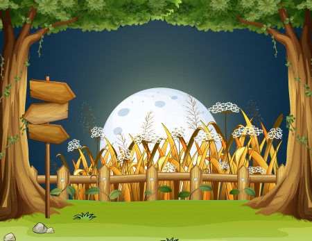 pointed arrows: Illustration of a forest with wooden arrowboards