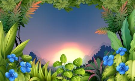 ochtend dauw: Illustratie van een vroege ochtend uitzicht op het bos