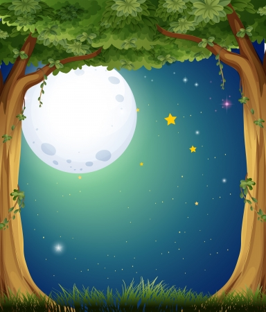 Illustration of a forest and the bright moon Illustration