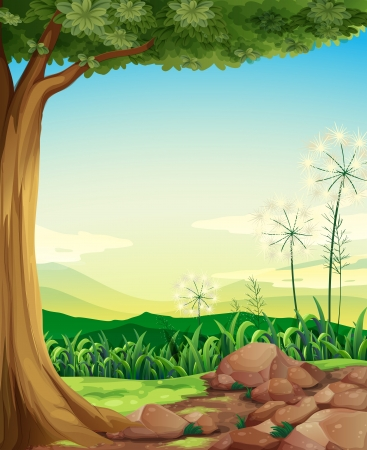 surrounding: Illustration of a forest with rocks Illustration