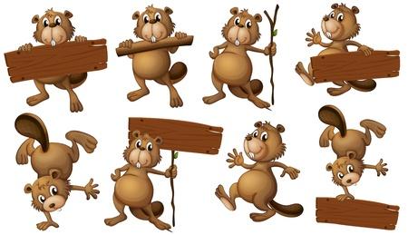 castor: Ilustración de un grupo de castores juguetones con letreros vacías sobre un fondo blanco Vectores