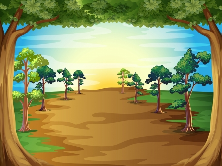 Illustration of the growing trees at the forest Vector