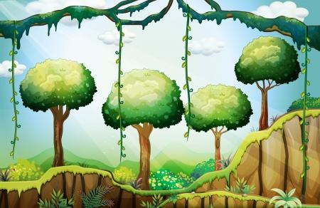 helechos: Ilustración de los árboles en el bosque bajo los rayos del sol