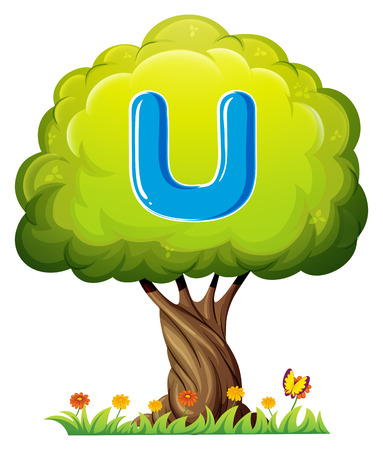 vowel: Illustration of a tree with a letter U on a white background