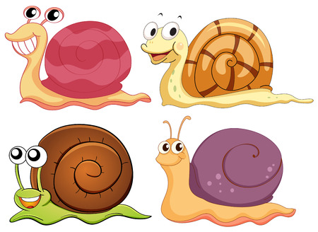 Illustration of the four snails with different shells on a white background Vector