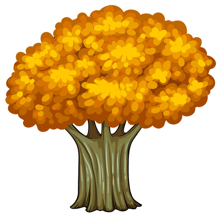 Illustration of a big old tree on a white background Vector