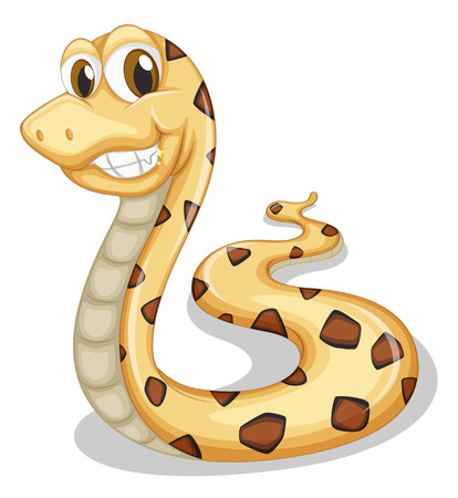 coldblooded: Illustration of a smiling snake on a white background