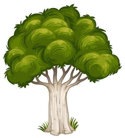in the shade: Illustration of a shade of a big tree on a white background