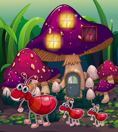 cartoon insect: Illustration of a colony of ants near the mushroom house