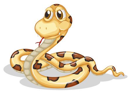 unfriendly: Illustration of a scary snake on a white background
