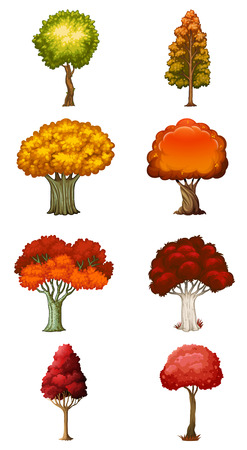Illustration of the eight different trees on a white background Vector
