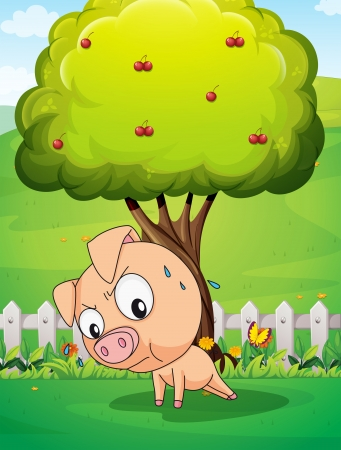 Illustration of a pig exercising below the cherry tree