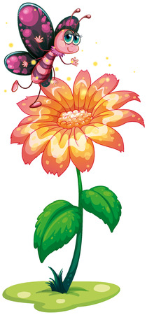 Illustration of a butterfly above the giant flower on a white background