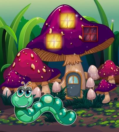 recursos naturales: Ilustración de un gusano, cerca de la casa de la seta