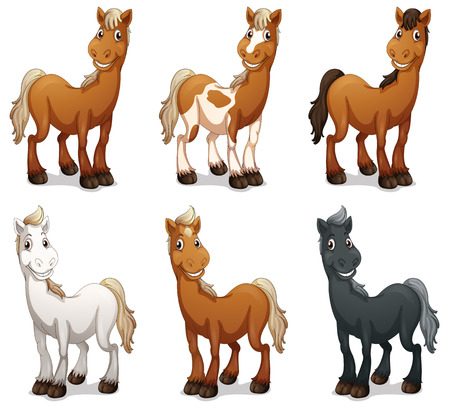 horses in the wild: Illustration of the six smiling horses on a white background