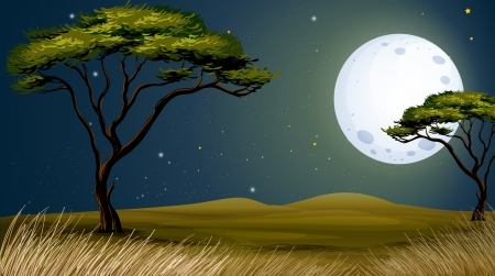 cartoon jungle: Illustration of a tree and the bright fullmoon