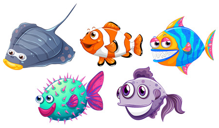 Illustration of the five different fishes on a white background Vector