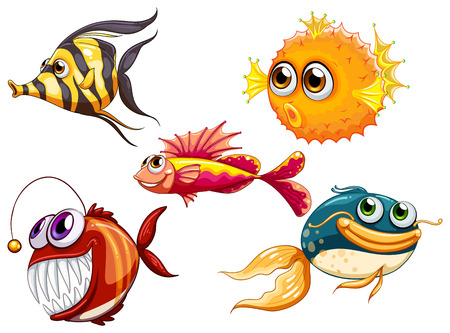 fish clipart: Illustration of a group of sea creatures on a white background