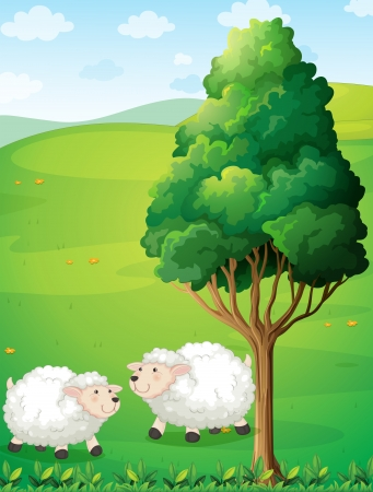 sheeps: Illustration of the two sheeps near the tree