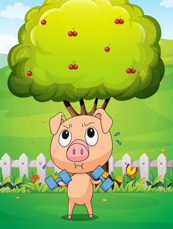 Illustration of a fat pig exercising near the cherry tree Stock Vector - 23185012