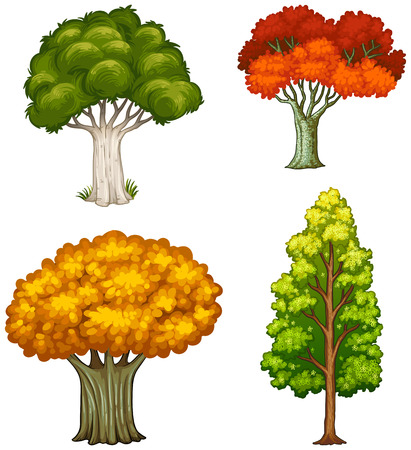 daytime: Illustration of the four trees with different colors on a white background
