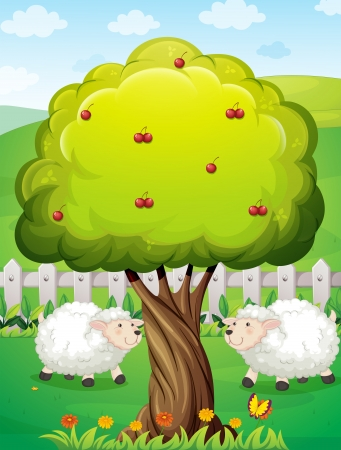 Illustration of the sheeps inside the fence near the apple tree