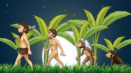 Illustrazione della evoluzione dell'uomo